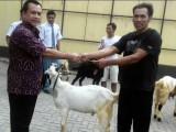 Perayaan Hari Raya Idul Adha Tahun 2017/1438H SMAN 1 Banjarnegara